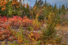 在所有季节期间, Splitrock灯塔是一个普遍的国家公园 免版税图库摄影
