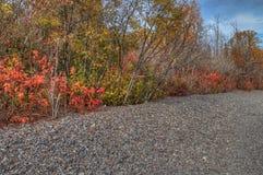 在所有季节期间, Splitrock灯塔是一个普遍的国家公园 库存图片