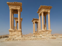 在扇叶树头榈,叙利亚的古老废墟 免版税库存图片