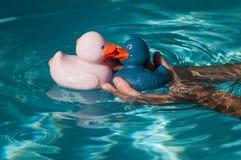 在手中亲吻人的桃红色和蓝色橡胶鸭子玩具 免版税图库摄影