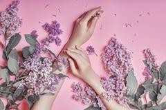 在手中塑造艺术手自然化妆用品妇女,明亮的紫色淡紫色花与明亮的对比构成,手关心 创造性 图库摄影