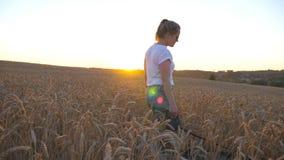 在手中拿着金黄麦子茎和走与她的在皮带的西伯利亚爱斯基摩人的少女档案横跨草甸 影视素材