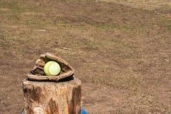 在手套的垒球 免版税图库摄影