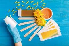 在手套的手与与一个集合的卷在蓝色木背景的去壳的 在视图之上 免版税库存图片
