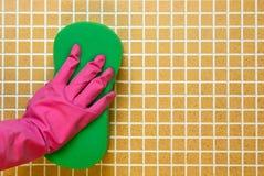 在手套的手与桃红色 库存照片