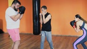 在手套的把装箱的训练 单独减肥操练有胡子的肥胖人的健身房 与个人教练的锻炼在a 影视素材