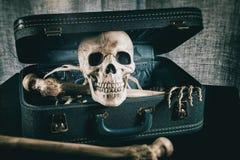 在手提箱3的骨骼 库存照片