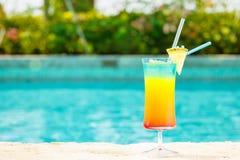 在手段水池的边缘的彩虹鸡尾酒 luxur的概念 库存照片