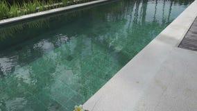 在手段鸡尾酒的休息标志在椰子和在水池边缘的一句草帽谎言在棕榈树中 影视素材