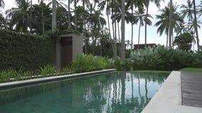 在手段鸡尾酒的休息标志在椰子和在水池边缘的一句草帽谎言在棕榈树中 股票视频
