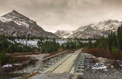 在手肘足迹的绵羊河木桥梁在卡纳纳斯基斯国家 库存照片