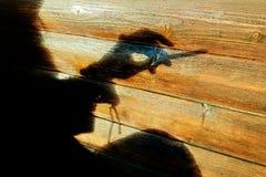 在手边拿着一根香烟的一个肉欲的女孩剪影的阴影在一好日子有木背景-特写镜头和香烟 库存照片