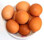 在打击的鸡蛋在白色背景 图库摄影