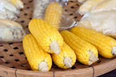 在打谷的篮子放置的煮沸的甜玉米 图库摄影