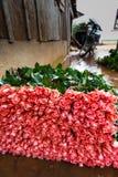 在托儿所的数十朵桃红色玫瑰准备好市场 库存照片