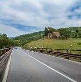 在托斯卡纳的小山的路 库存照片