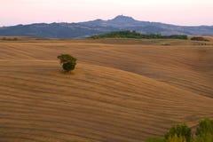在托斯卡纳的领域的9月微明 意大利 免版税库存图片