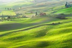 在托斯卡纳的风景的大气绿色春天 免版税库存图片