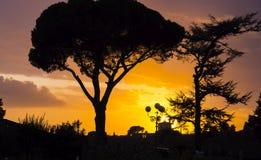 在托斯卡纳风景的惊人的日落 免版税库存图片
