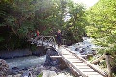 在托里斯del潘恩国家公园,智利巴塔哥尼亚,智利落后 图库摄影