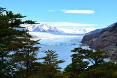 在托里斯del潘恩国家公园,智利的灰色冰川 库存图片