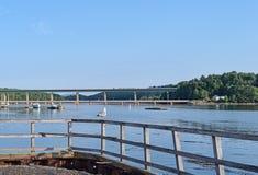 在扶手栏杆的海鸥在贝尔法斯特,缅因在夏天 免版税图库摄影