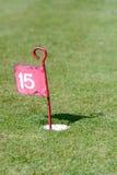 在投入路线的高尔夫球的第15个孔 免版税图库摄影