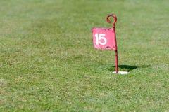 在投入路线的高尔夫球的第15个孔 库存图片