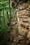 在抬头的峭壁下的供徒步旅行的小道在森林里 库存照片