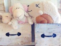 在抽屉的可爱的亲吻绵羊玩偶 库存图片