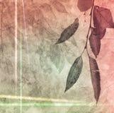 在抽象纸背景的下落的秋天叶子 免版税库存图片