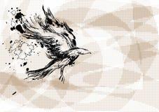 在抽象背景的乌鸦 免版税库存照片
