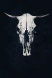在抽象背景的邪恶的白色公牛头骨 免版税图库摄影