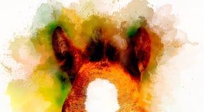 在抽象背景的马耳朵 颜色作用 库存图片