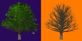 在抽象背景隔绝的树, 3D例证 库存照片