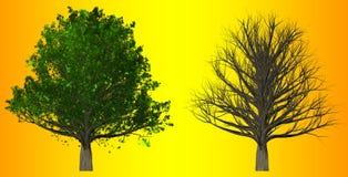 在抽象背景, 3D的树例证 库存图片