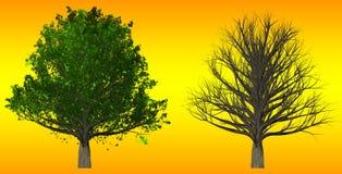 在抽象背景, 3D的树例证 免版税库存图片