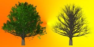在抽象背景, 3D的树例证 免版税图库摄影