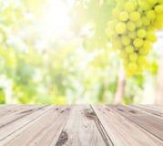在抽象迷离葡萄农厂背景前面的老木地板 库存图片