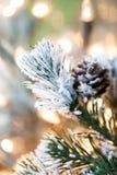 在抽象金黄背景的圣诞树 免版税库存图片