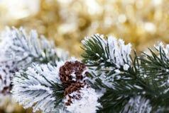 在抽象金黄背景的圣诞树 图库摄影