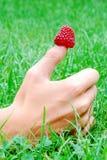 在拇指的草莓 免版税图库摄影