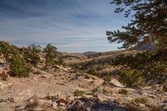 在拉斯维加斯附近的蓝色金刚石小山地区 图库摄影