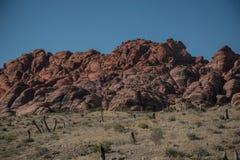 在拉斯维加斯,内华达附近的红色岩石峡谷 免版税库存照片