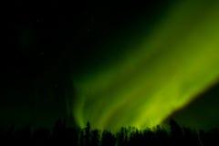 在拉普兰的北极光 免版税库存图片