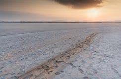 在拉纳卡空的干燥盐湖的日落在塞浦路斯 免版税库存照片