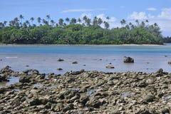 在拉罗通加库克群岛使Ngatangila港口环境美化看法  免版税图库摄影