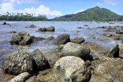 在拉罗通加库克群岛使Ngatangila港口环境美化看法  免版税库存照片