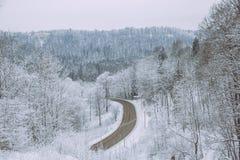 在拉脱维亚的冷的冬天 白色自然和冷气候 库存照片