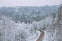 在拉脱维亚的冷的冬天 白色自然和冷气候 免版税图库摄影